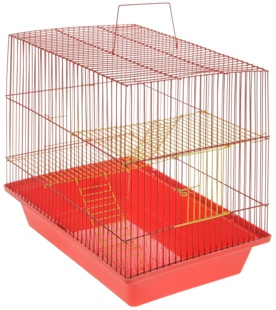 Клетка для грызунов ЗооМарк Гризли, 3-этажная, цвет: красный поддон, красная решетка, желтые этажи, 41 х 30 х 36 см. 230ж230жКККлетка ЗооМарк Гризли, выполненная из полипропилена и металла, подходит для мелких грызунов. Изделие трехэтажное. Клетка имеет яркий поддон, удобна в использовании и легко чистится. Сверху имеется ручка для переноски. Такая клетка станет уединенным личным пространством и уютным домиком для маленького грызуна.