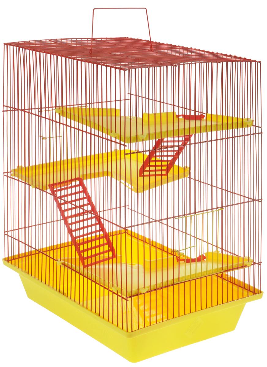 Клетка для грызунов ЗооМарк Гризли, 4-этажная, цвет: желтый поддон, красная решетка, желтые этажи, 41 х 30 х 50 см240ЖККлетка ЗооМарк Гризли, выполненная из полипропилена и металла, подходит для мелких грызунов. Изделие четырехэтажное. Клетка имеет яркий поддон, удобна в использовании и легко чистится. Сверху имеется ручка для переноски. Такая клетка станет уединенным пространством и уютным домиком для маленького грызуна.