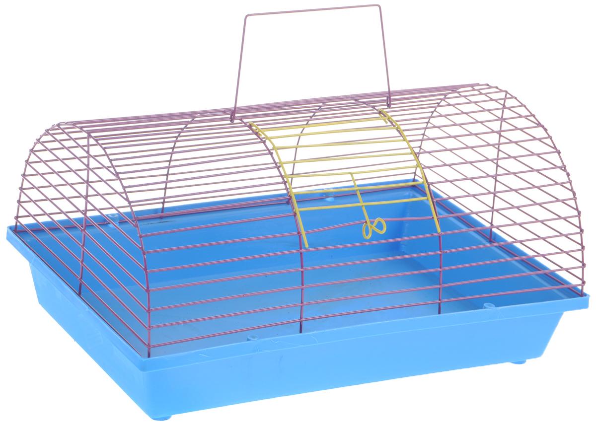 Клетка для грызунов ЗооМарк, цвет: голубой поддон, фиолетовая решетка, 36 х 23 х 17,5 см(80)СФКлетка ЗооМарк, выполненная из полипропилена и металла, подходит для мелких грызунов. Она имеет яркий поддон, удобна в использовании и легко чистится. Сверху имеется ручка для переноски. Такая клетка станет уединенным личным пространством и уютным домиком для маленького грызуна.