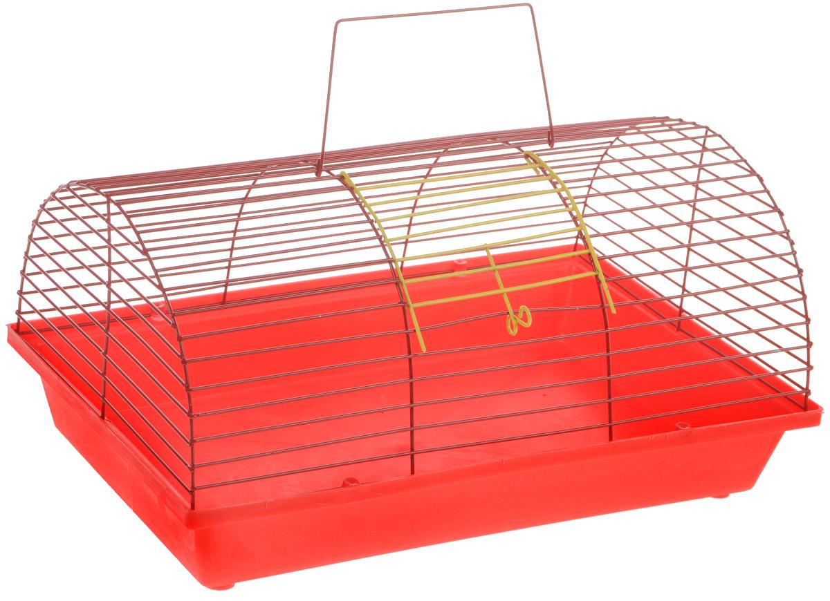 Клетка для грызунов ЗооМарк, цвет: красный поддон, красная решетка, 36 х 23 х 17,5 см(80)КККлетка ЗооМарк, выполненная из полипропилена и металла, подходит для мелких грызунов. Она имеет яркий поддон, удобна в использовании и легко чистится. Сверху имеется ручка для переноски. Такая клетка станет уединенным личным пространством и уютным домиком для маленького грызуна.
