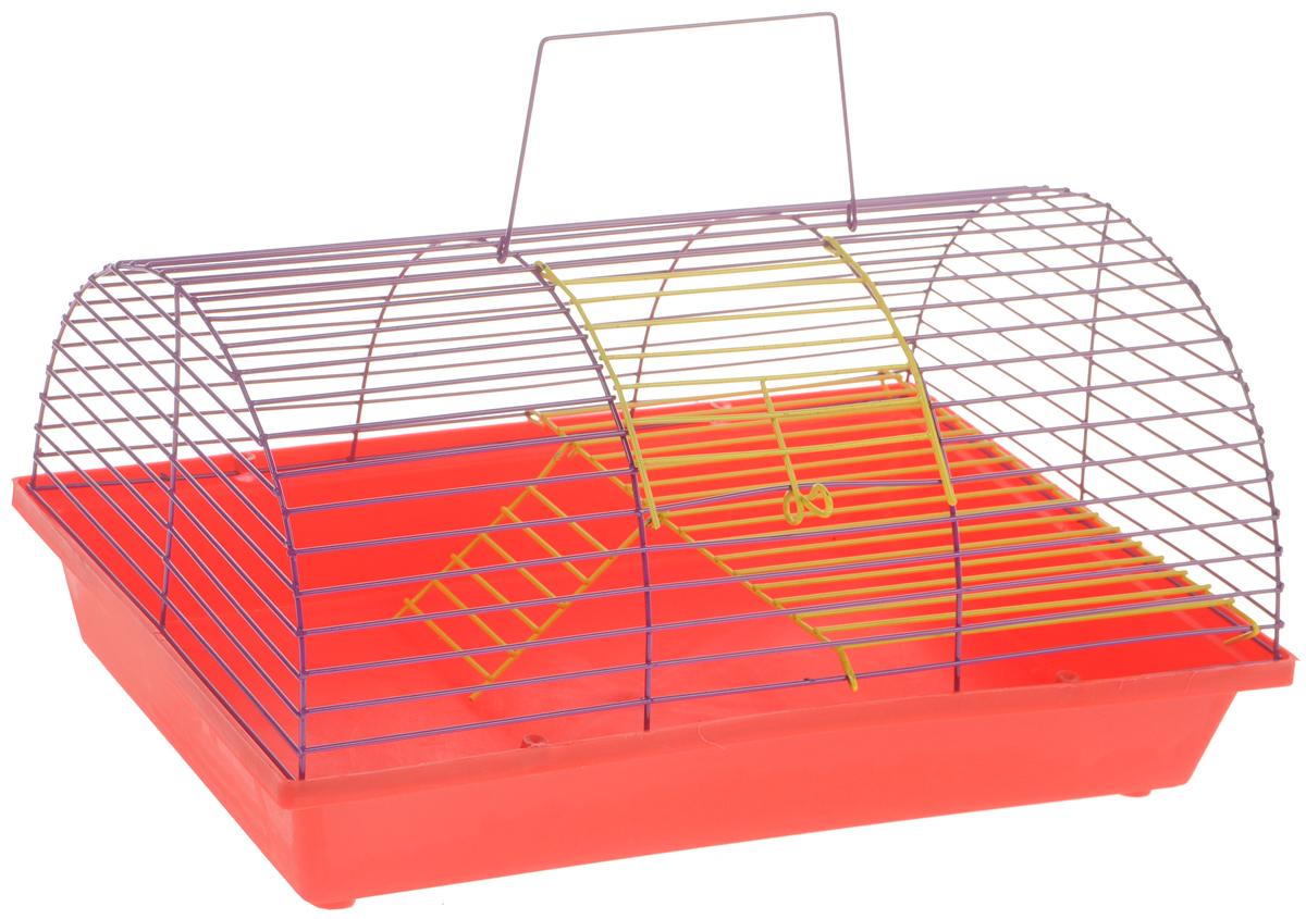Клетка для грызунов ЗооМарк, цвет: красный поддон, ярко-фиолетовая решетка, 36 х 23 х 17,5 см. 110ж(110ж)КФКлетка ЗооМарк, выполненная из полипропилена и металла, подходит для грызунов. Она имеет яркий поддон, удобна в использовании и легко чистится. Клетка оснащена вторым ярусом с лесенкой, выполненных из металла. Такая клетка станет уединенным пространством и уютным домиком для маленького грызуна.