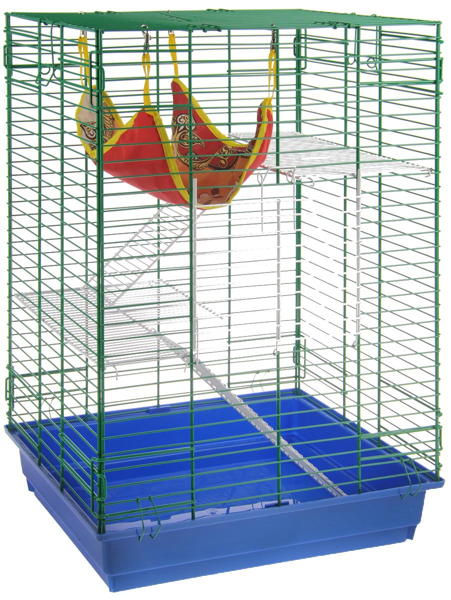 Клетка для шиншилл и хорьков ЗооМарк, цвет: синий поддон, зеленая решетка, 59 х 41 х 79 см. 725жк725жкСЗКлетка ЗооМарк, выполненная из полипропилена и металла, подходит для шиншилл и хорьков. Большая клетка оборудована длинными лестницами и гамаком. Изделие имеет яркий поддон, удобно в использовании и легко чистится. Сверху имеется ручка для переноски. Такая клетка станет уединенным личным пространством и уютным домиком для грызуна.