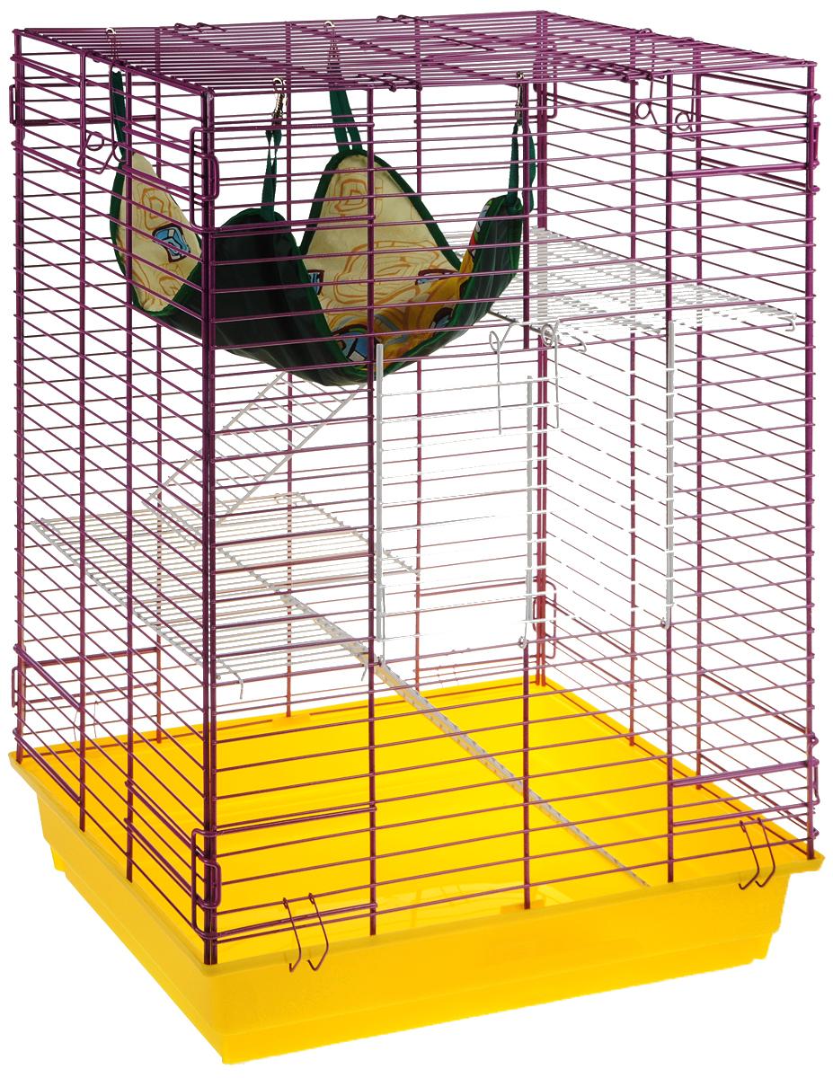 Клетка для шиншилл и хорьков ЗооМарк, цвет: желтый поддон, фиолетовая решетка, 59 х 41 х 79 см. 725жк725жкЖФКлетка ЗооМарк, выполненная из полипропилена и металла, подходит для шиншилл и хорьков. Большая клетка оборудована длинными лестницами и гамаком. Изделие имеет яркий поддон, удобно в использовании и легко чистится. Сверху имеется ручка для переноски. Такая клетка станет уединенным личным пространством и уютным домиком для грызуна.
