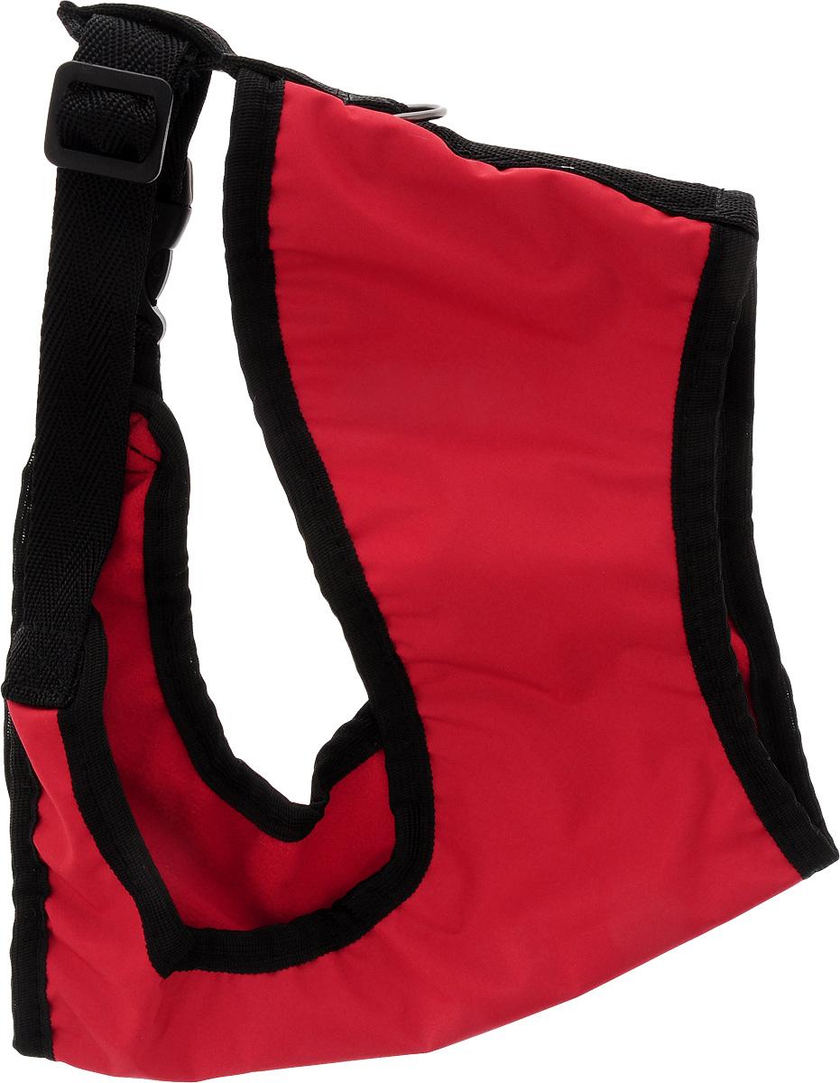 Шлейка для собак ЗооМарк, цвет: красный, черный. Размер 3Ш-3-КШлейка для собак ЗооМарк выполнена из оксфорда, а на подкладке используется флис. Изделие оснащено специальным крючком, к которому вы с легкостью сможете прикрепить поводок. Шлейка имеет застежку фастекс и регулируется при помощи пряжки. Шлейка - это альтернатива ошейнику. Правильно подобранная шлейка не стесняет движения питомца, не натирает кожу, поэтому животное чувствует себя в ней уверенно и комфортно. Изделие отличается высоким качеством, удобством и универсальностью. Обхват груди: 25-30 см. Длина спинки: 17 см. Ширина ремней: 2 см.
