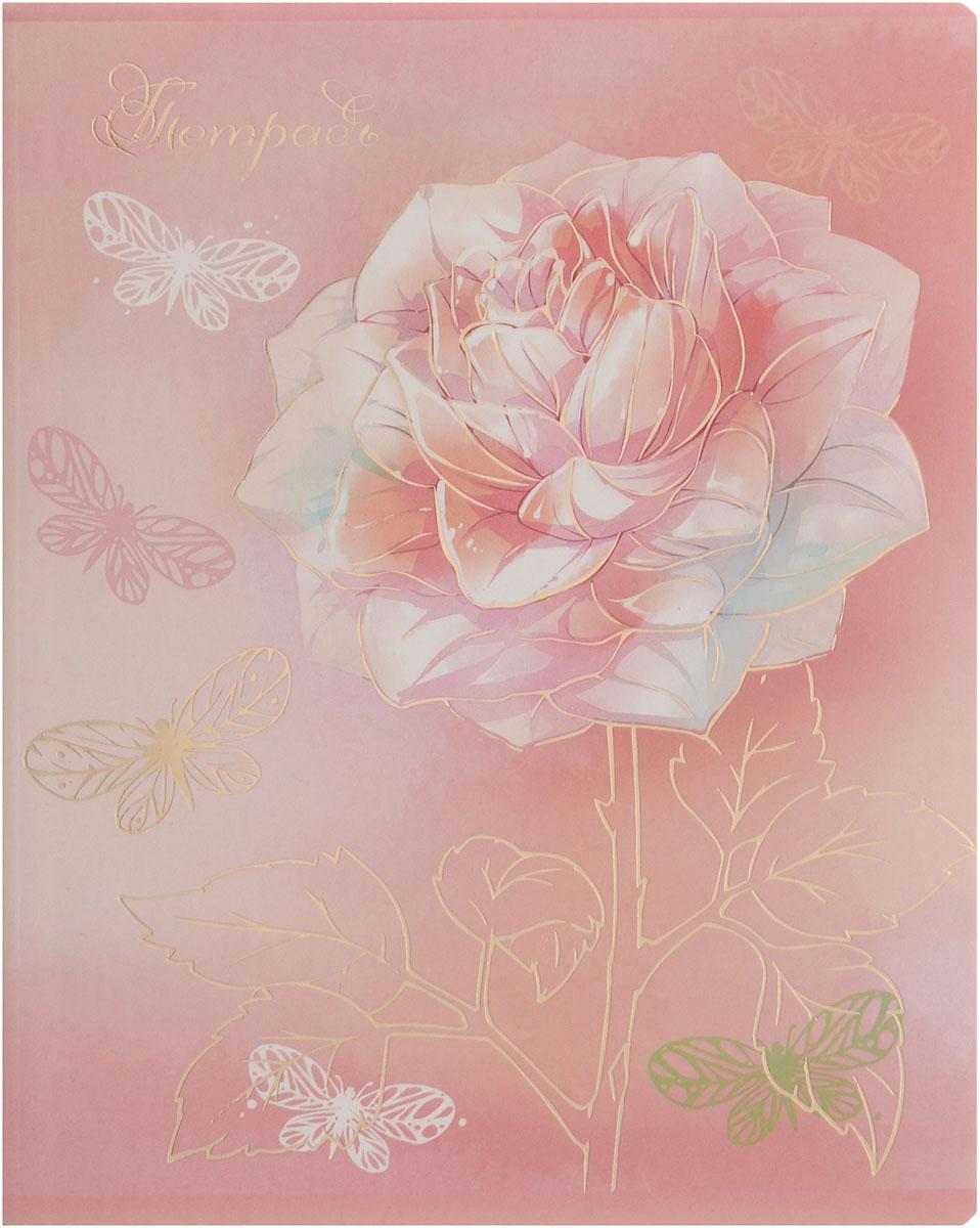 Феникс+ Тетрадь Нежные цветы 48 листов в клетку цвет розовый34097_розовая розаТетрадь Феникс+ Нежные цветы подойдет для школьников, студентов для различных записей. Обложка с закругленными углами, выполненная из плотного картона, позволит сохранить тетрадь в аккуратном состоянии на протяжении всего времени использования. Лицевая сторона дополнена изображением цветка. Внутренний блок тетради, соединенный двумя металлическими скрепками, состоит из 48 листов белой бумаги. Стандартная линовка в клетку голубого цвета дополнена красными полями.