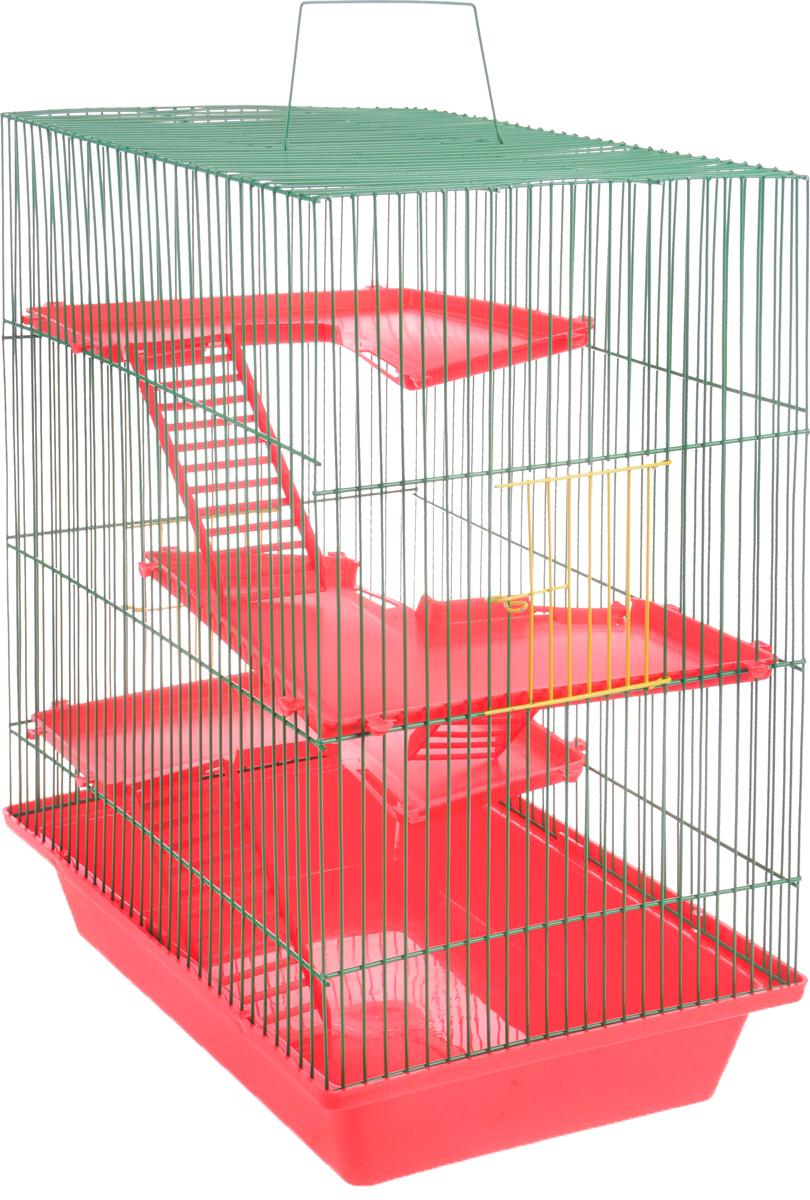 Клетка для грызунов ЗооМарк Гризли, 4-этажная, цвет: красный поддон, зеленая решетка, красные этажи, 41 х 30 х 50 см240КЗКлетка ЗооМарк Гризли, выполненная из полипропилена и металла, подходит для мелких грызунов. Изделие четырехэтажное. Клетка имеет яркий поддон, удобна в использовании и легко чистится. Сверху имеется ручка для переноски. Такая клетка станет уединенным личным пространством и уютным домиком для маленького грызуна.