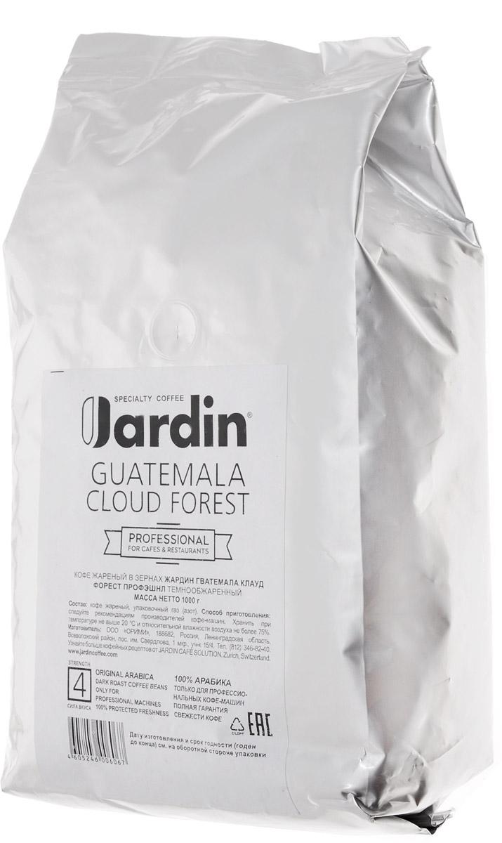 Jardin Guatemala Cloud Forest кофе в зернах, 1 кг (промышленная упаковка)0602-8-ХРКЗерновой кофе Jardin Guatemala Cloud Forest отличается своеобразным вкусом - плотным, с тонкой кислинкой и нотами черной смородины, а также долгим послевкусием. Этот сорт кофе выращивают в Гватемале на плодородных почвах вулканического происхождения, во влажном климате субтропических лесов. Уважаемые клиенты! Обращаем ваше внимание на то, что упаковка может иметь несколько видов дизайна. Поставка осуществляется в зависимости от наличия на складе.