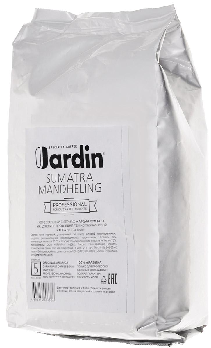 Jardin Sumatra Mandheling кофе в зернах, 1 кг (промышленная упаковка)0603-8-ХРКЗерновой кофе Jardin Sumatra Mandheling открывает густой, без кислинки, вкус с пряными оттенками и послевкусие с нотами специй. Сорт Mandheling, выращенный на Суматре, одном из экзотических островов Индонезии, считается самым узнаваемым по вкусу - его невозможно спутать ни с каким другим. Уважаемые клиенты! Обращаем ваше внимание на то, что упаковка может иметь несколько видов дизайна. Поставка осуществляется в зависимости от наличия на складе.