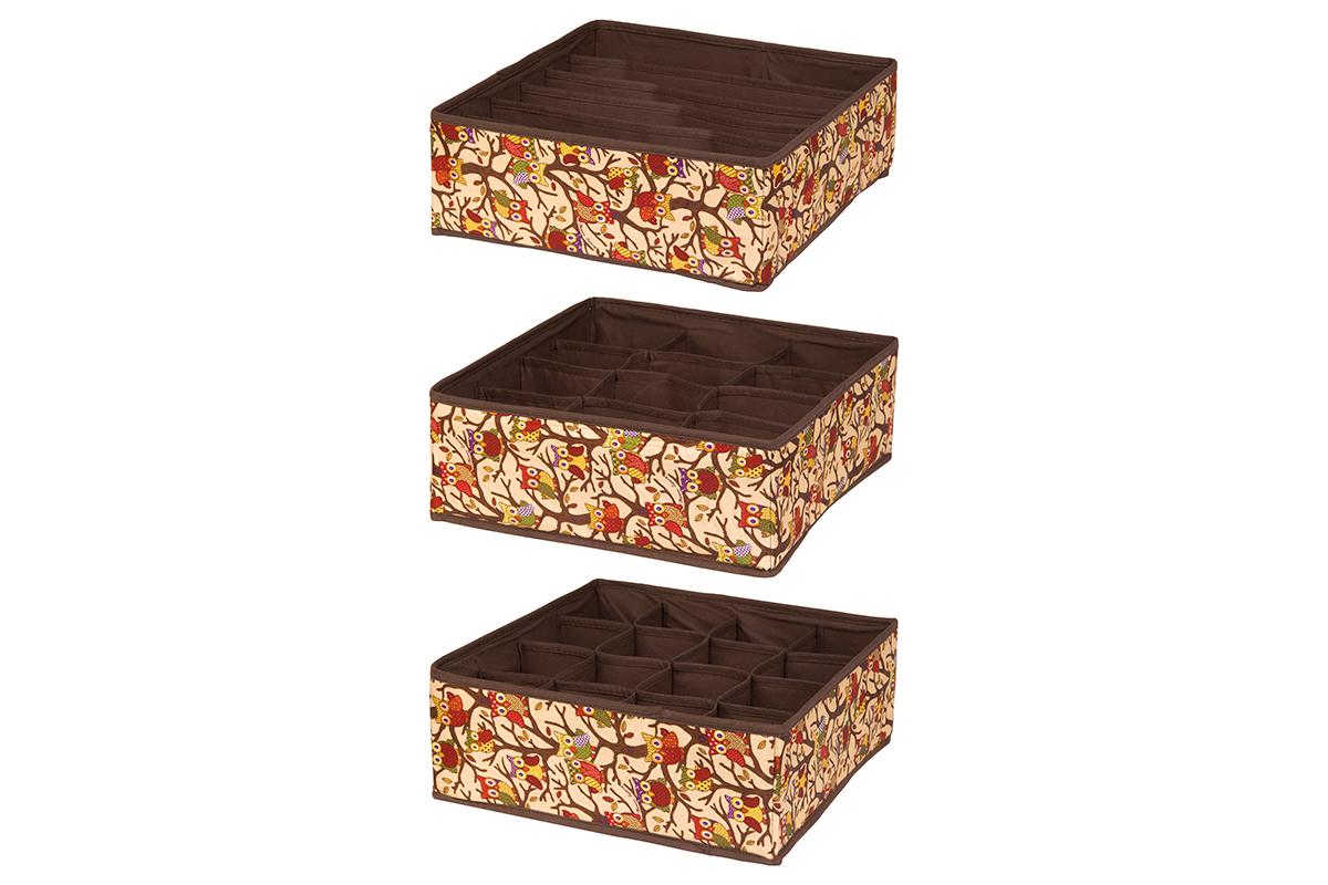 Набор кофров для хранения EL Casa Совы на ветках, цвет: бежевый, 32 х 32 х 12 см, 3 шт370502Набор EL Casa Совы на ветках состоит из трех кофров для хранения. Кофры выполнены из полиэстера, который обеспечивает естественную вентиляцию, отлично пропускает воздух, но не пропускает пыль. Благодаря специальным вставкам из картона кофры прекрасно держат форму. Все кофры содержат разное количество секций. Первый кофр содержит 16 секций для хранения носков и трусов, второй - 12 секций, а третий - 6 продолговатых секций, которые идеальны для бюстгальтеров. Для удобства использования кофры не имеют крышки. Изделия имеют оригинальный дизайн с красочным изображением забавных сов. Легко складываются и раскладываются. Они помогут хранить вещи компактно и удобно. Подходят для размещения в шкафу, комоде.