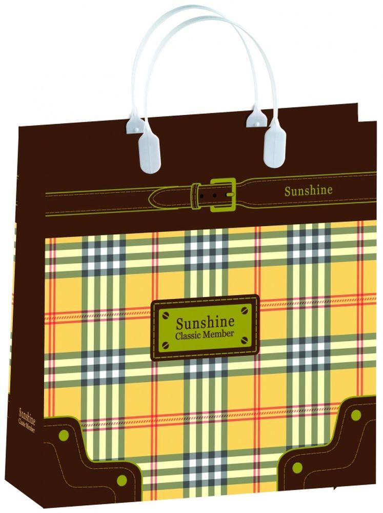 Пакет подарочный Bello, 30 х 10 х 30 см. BAM 87BAM 87Подарочный пакет Bello, изготовленный из пищевого полипропилена, станет незаменимым дополнением к выбранному подарку. Дно изделия укреплено плотным картоном, который позволяет сохранить форму пакета и исключает возможность деформации дна под тяжестью подарка. Для удобной переноски на пакете имеются две пластиковые ручки. Подарок, преподнесенный в оригинальной упаковке, всегда будет самым эффектным и запоминающимся. Окружите близких людей вниманием и заботой, вручив презент в нарядном, праздничном оформлении. Грузоподъемность: 12 кг. Морозостойкость: до -30°С.