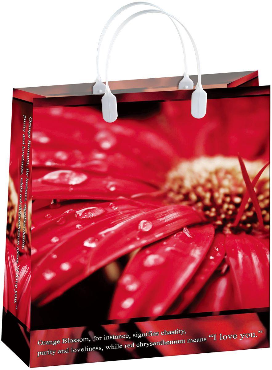 Пакет подарочный Bello, 32 х 10 х 42 см. BAL 83BAL 83Подарочный пакет Bello, изготовленный из пищевого полипропилена, станет незаменимым дополнением к выбранному подарку. Дно изделия укреплено плотным картоном, который позволяет сохранить форму пакета и исключает возможность деформации дна под тяжестью подарка. Для удобной переноски на пакете имеются две пластиковые ручки. Подарок, преподнесенный в оригинальной упаковке, всегда будет самым эффектным и запоминающимся. Окружите близких людей вниманием и заботой, вручив презент в нарядном, праздничном оформлении. Грузоподъемность: 12 кг. Морозостойкость: до -30°С.
