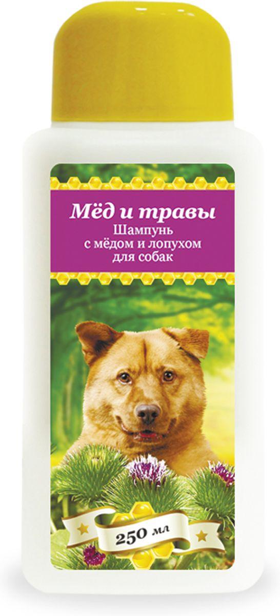 Шампунь с мёдом и лопухом Пчелодар для собак, 250 мл1037Серия косметических мягких шампуней Мед и травы для животных (собак и кошек) специально разработана для ежедневного ухода за шерстью и кожей. Добавление натурального меда и экстрактов трав в Состав шампуней позволяет превосходно промывать длинную и густую шерсть, устранять неприятный запах, укреплять шерстный покров и сокращать период линьки у животного. Шампуни глубоко увлажняют, смягчают и питают кожу животного, устраняют сухость и шелушения, помогают восстановить защитный слой. Натуральные компоненты косметических шампуней серии Мед и травы позволяют применять их для животных с чувствительной кожей, склонной к аллергическим реакциям, а также щенкам и котятам. Шампунь с медом и лопухом рекомендован для собак в период линьки и при чрезмерном выпадении шерсти. Входящий в Состав натуральный экстракт лопуха помогает укрепить волосяные луковицы, увлажнить и смягчить шерсть животного. Состав: вода очищенная, мед цветочный натуральный, натрия лаурет сульфат,...