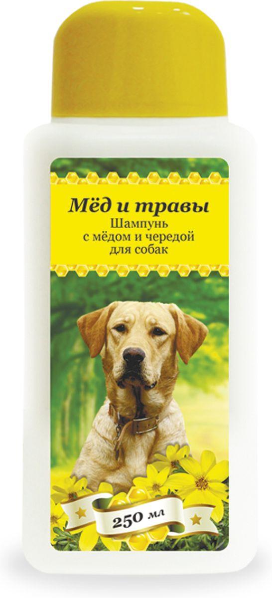 Шампунь с медом и чередой Пчелодар для собак, 250 мл1039Серия косметических мягких шампуней Мед и травы для животных (собак и кошек) специально разработана для ежедневного ухода за шерстью и кожей. Добавление натурального меда и экстрактов трав в Состав шампуней позволяет превосходно промывать длинную и густую шерсть, устранять неприятный запах, укреплять шерстный покров и сокращать период линьки у животного. Шампуни глубоко увлажняют, смягчают и питают кожу животного, устраняют сухость и шелушения, помогают восстановить защитный слой. Натуральные компоненты косметических шампуней серии Мед и травы позволяют применять их для животных с чувствительной кожей, склонной к аллергическим реакциям, а также щенкам и котятам. Шампунь с медом и чередой подходит для собак с чувствительной кожей, склонной к дерматитам. Входящий в Состав натуральный экстракт череды снимает воспаление, успокаивает раздраженные участки кожи, устраняет зуд, способствует заживлению мелких ран и расчесов. Состав: вода очищенная, мед цветочный...