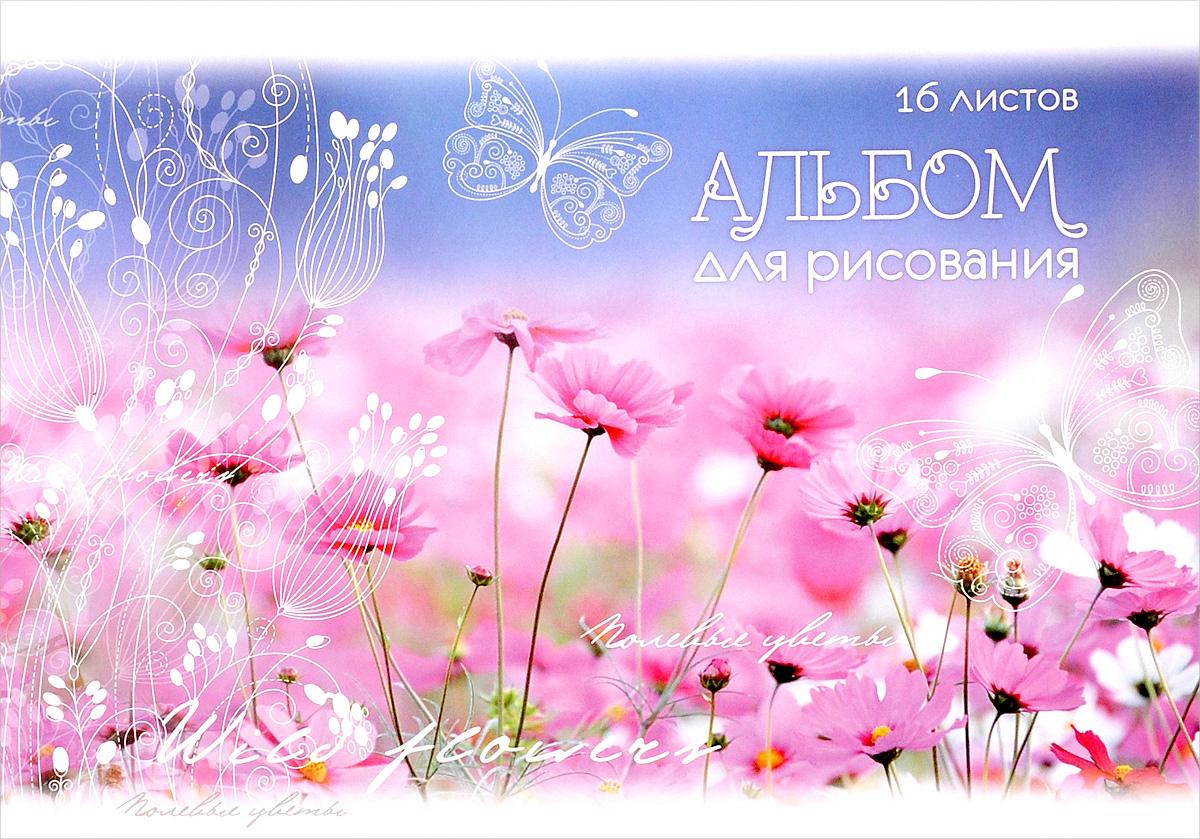 ArtSpace Альбом для рисования Полевые цветы 16 листов