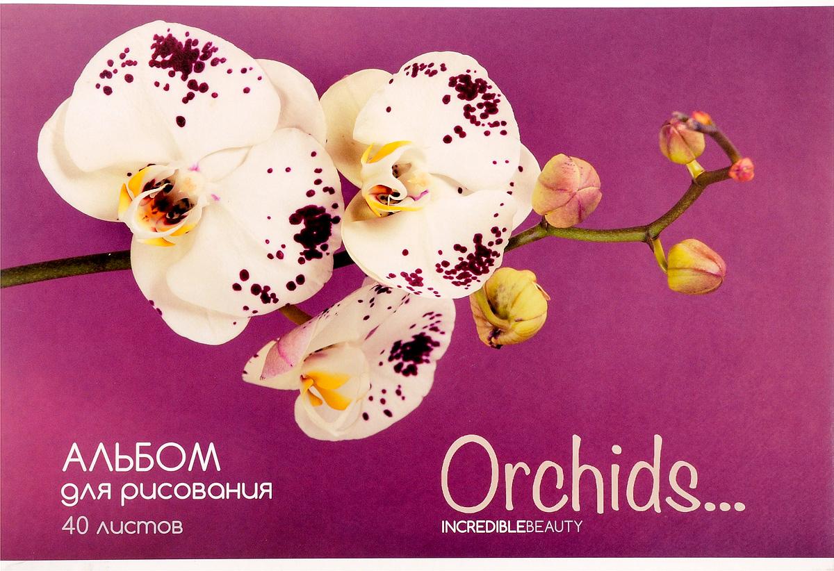 ArtSpace Альбом для рисования Цветы Орхидеи 40 листов А40_3809