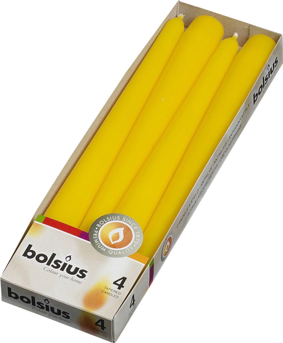 Набор свечей Bolsius, цвет: желтый, высота 25 см, 4 шт103600350911Набор Bolsius состоит из четырех декоративных свечей, изготовленных из парафина. Такие свечи создадут атмосферу таинственности и загадочности и наполнят ваш дом волшебством и ощущением праздника. Хороший сувенир для друзей и близких.