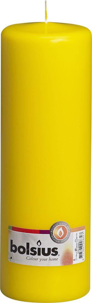 Свеча Bolsius, цвет: желтый, высота 25 см103616680111Свеча Bolsius выполнена из парафина в классическом стиле. Ее можно поставить в любое место и она станет ярким украшением интерьера. Свеча Bolsius создаст незабываемую атмосферу, будь то торжество, романтический вечер или будничный день.