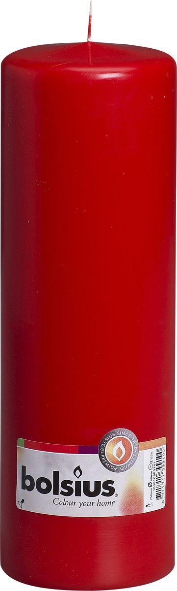 Свеча Bolsius, цвет: красный, высота 25 см103616680141Свеча Bolsius выполнена из парафина в классическом стиле. Ее можно поставить в любое место и она станет ярким украшением интерьера. Свеча Bolsius создаст незабываемую атмосферу, будь то торжество, романтический вечер или будничный день.