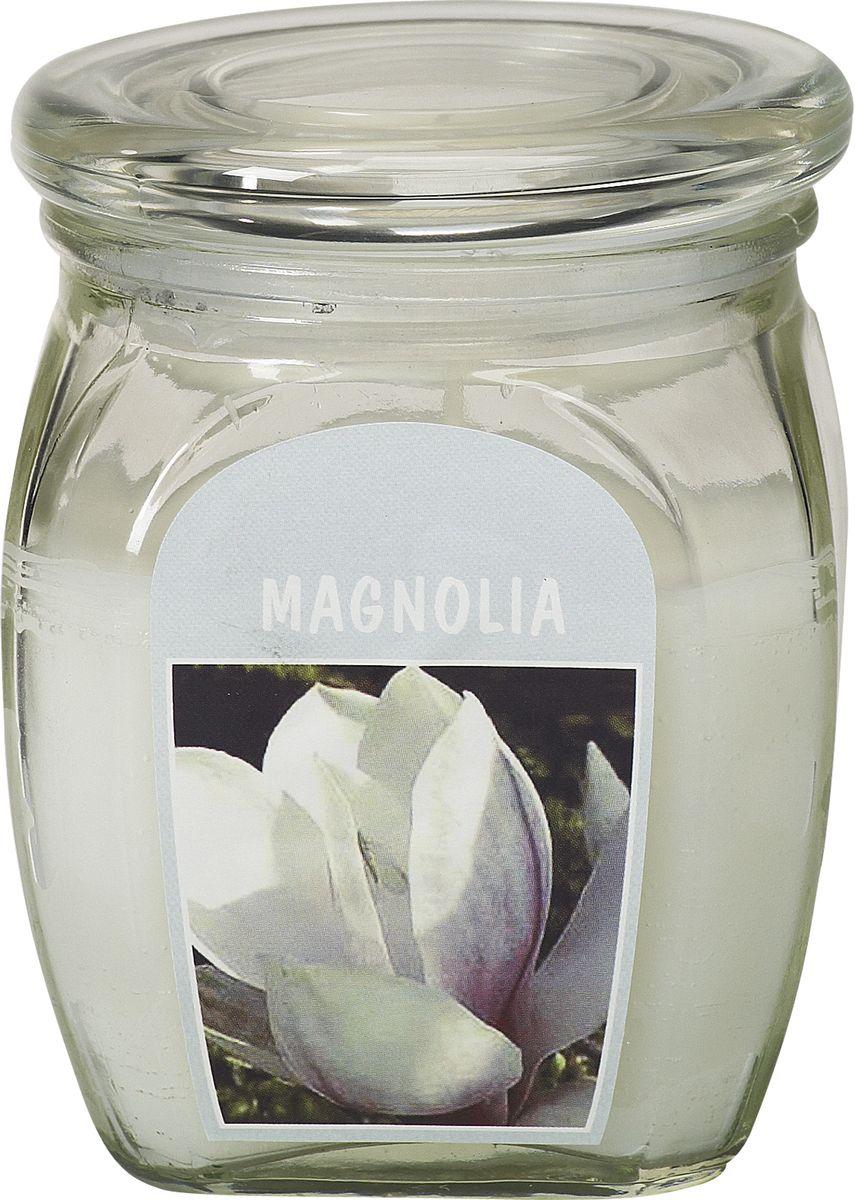 Свеча ароматизированная Bolsius Магнолия, высота 12 см103926110304Ароматизированная свеча Bolsius, изготовленная из парафина, помещена в подсвечник, выполненный из стекла. Изделие отличается оригинальным дизайном и приятным ароматом. Такая свеча не только поможет дополнить интерьер вашей комнаты, но и станет отличным подарком.
