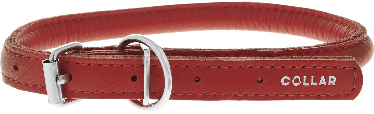 Ошейник для собак CoLLaR Glamour, цвет: красный, диаметр 1 см, обхват шеи 33-41 см35053Ошейник для собак CoLLaR Glamour, выполненный из натуральной кожи, устойчив к влажности и перепадам температур. Крепкие металлические элементы делают ошейник надежным и долговечным. Изделие отличается высоким качеством, удобством и универсальностью. Размер ошейника регулируется при помощи пряжки, зафиксированной на одном из 5 отверстий. Минимальный обхват шеи: 33 см. Максимальный обхват шеи: 41 см. Диаметр ошейника: 1 см.