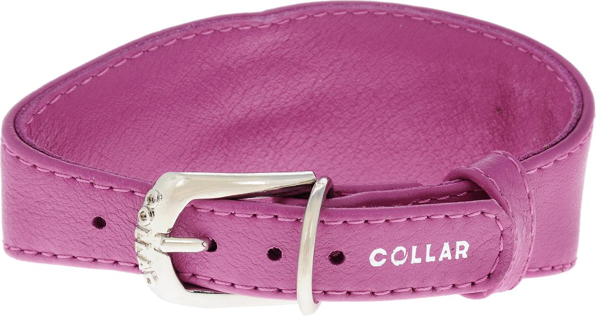 Ошейник для борзых собак CoLLaR Glamour, цвет: розовый, ширина 1,5 см, обхват шеи 23-27 см34647Ошейник для борзых собак CoLLaR Glamour, выполненный из натуральной кожи, устойчив к влажности и перепадам температур. Крепкие металлические элементы делают ошейник надежным и долговечным. Изделие отличается высоким качеством, удобством и универсальностью. Размер ошейника регулируется при помощи пряжки, зафиксированной на одном из 5 отверстий. Минимальный обхват шеи: 23 см. Максимальный обхват шеи: 27 см. Минимальная ширина: 1,5 см. Максимальная ширина: 5 см.