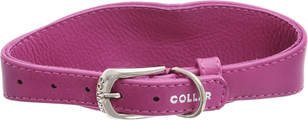 Ошейник для борзых собак CoLLaR Glamour, цвет: розовый, ширина 1,5 см, обхват шеи 26-32 см34657Ошейник для борзых собак CoLLaR Glamour, выполненный из натуральной кожи, устойчив к влажности и перепадам температур. Крепкие металлические элементы делают ошейник надежным и долговечным. Изделие отличается высоким качеством, удобством и универсальностью. Размер ошейника регулируется при помощи пряжки, зафиксированной на одном из 5 отверстий. Минимальный обхват шеи: 26 см. Максимальный обхват шеи: 32 см. Минимальная ширина: 1,5 см. Максимальная ширина: 5 см.