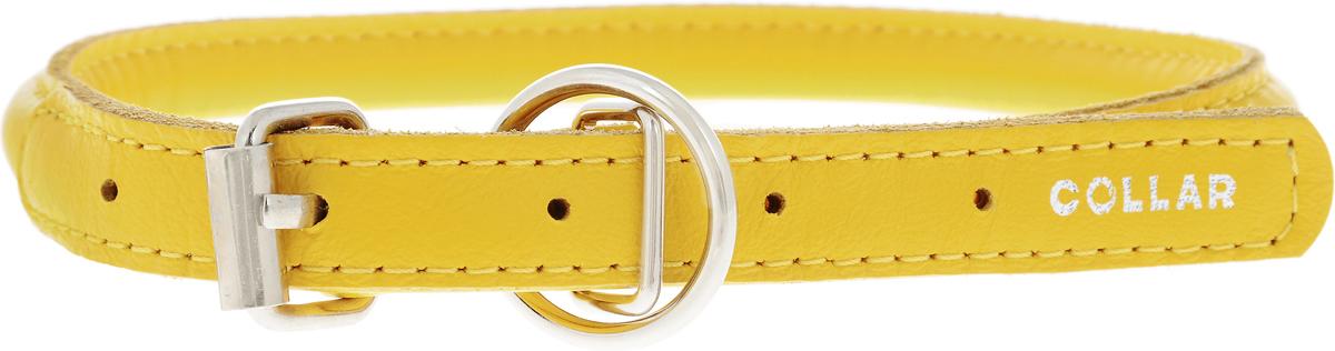 Ошейник для собак CoLLaR Glamour, цвет: желтый, диаметр 1 см, обхват шеи 33-41 см35058Ошейник для собак CoLLaR Glamour, выполненный из натуральной кожи, устойчив к влажности и перепадам температур. Крепкие металлические элементы делают ошейник надежным и долговечным. Изделие отличается высоким качеством, удобством и универсальностью. Размер ошейника регулируется при помощи пряжки, зафиксированной на одном из 5 отверстий. Минимальный обхват шеи: 33 см. Максимальный обхват шеи: 41 см. Диаметр ошейника: 1 см.
