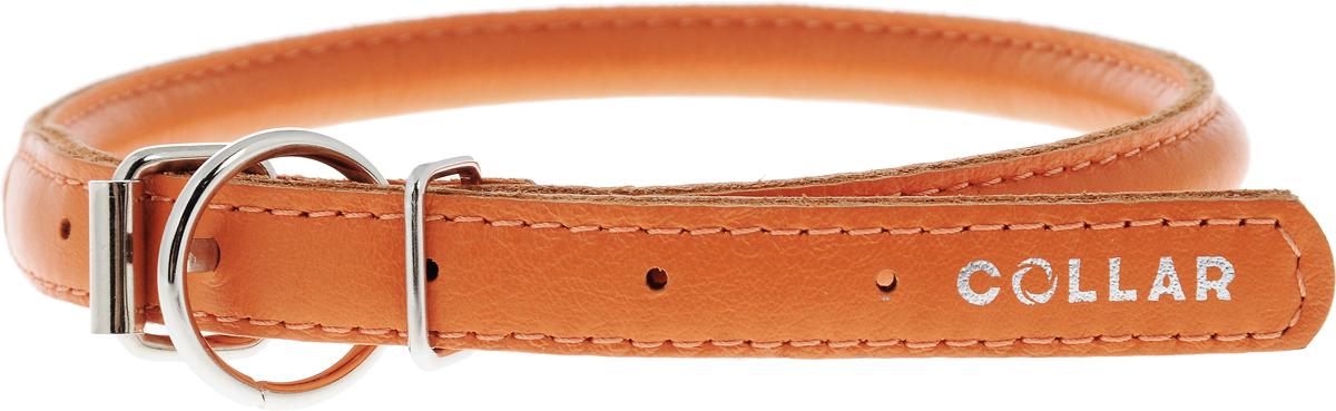 Ошейник для собак CoLLaR Glamour, цвет: оранжевый, диаметр 1 см, обхват шеи 39-47 см35064Ошейник для собак CoLLaR Glamour изготовлен из натуральной кожи. Ошейник устойчив к влажности и перепадам температур. Сверхпрочные нити, крепкие металлические элементы делают ошейник надежным и долговечным. Обхват ошейника регулируется при помощи пряжки. Ошейник оснащен металлическим кольцом для крепления поводка. Изделие отличается высоким качеством, удобством и универсальностью. Минимальный обхват шеи: 39 см. Максимальный обхват шеи: 47 см. Диаметр ошейника: 1 см. Длина ошейника: 51 см.