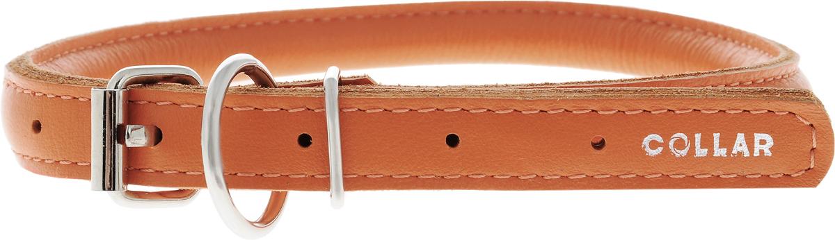 Ошейник для собак CoLLaR Glamour, цвет: оранжевый, диаметр 1 см, обхват шеи 33-41 см35054Ошейник для собак CoLLaR Glamour, выполненный из натуральной кожи, устойчив к влажности и перепадам температур. Крепкие металлические элементы делают ошейник надежным и долговечным. Изделие отличается высоким качеством, удобством и универсальностью. Размер ошейника регулируется при помощи пряжки, зафиксированной на одном из 5 отверстий. Минимальный обхват шеи: 33 см. Максимальный обхват шеи: 41 см. Диаметр ошейника: 1 см.
