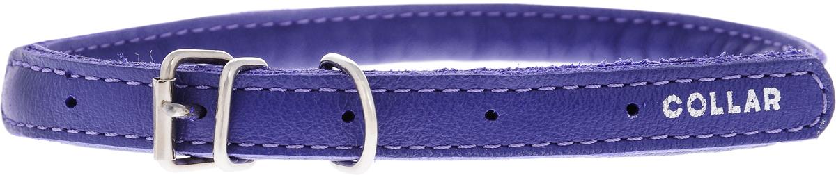 Ошейник для собак CoLLaR Glamour, цвет: фиолетовый, диаметр 1 см, обхват шеи 33-41 см35059Ошейник для собак CoLLaR Glamour, выполненный из натуральной кожи, устойчив к влажности и перепадам температур. Крепкие металлические элементы делают ошейник надежным и долговечным. Изделие отличается высоким качеством, удобством и универсальностью. Размер ошейника регулируется при помощи пряжки, зафиксированной на одном из 5 отверстий. Минимальный обхват шеи: 33 см. Максимальный обхват шеи: 41 см. Диаметр ошейника: 1 см.