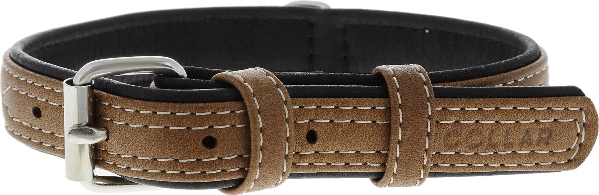 Ошейник для собак CoLLaR SOFT, цвет верха: коричневый, цвет низа: черный, ширина 2 см, обхват шеи 30-39 см7197Ошейник для собак CoLLaR SOFT изготовлен из высококачественной кожи. Он устойчив к влажности и перепадам температур. Сверхпрочные нити, крепкие металлические элементы делают ошейник надежным и долговечным. Обхват ошейника регулируется при помощи пряжки. Ошейник оснащен металлическим кольцом для крепления поводка. Изделие отличается высоким качеством, удобством и универсальностью. Минимальный обхват шеи: 30 см. Максимальный обхват шеи: 39 см. Ширина ошейника: 2 см. Длина ошейника: 43 см.