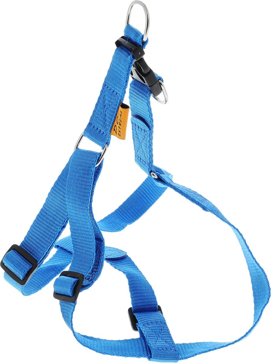 Шлейка для собак DOGExtremе, цвет: синий, ширина 20 мм, обхват груди 50-80 см06672Шлейка DOGExtreme, изготовленная из прочного нейлона, подходит для собак. Крепкие металлические элементы делают ее надежной и долговечной. Шлейка - это альтернатива ошейнику. Правильно подобранная шлейка не стесняет движения питомца, не натирает кожу, поэтому животное чувствует себя в ней уверенно и комфортно. Размер регулируется при помощи пряжки. Изделие отличается высоким качеством, удобством и универсальностью. В комплекте нейлоновый поводок с металлическим карабином. Обхват груди: 50-80 см. Ширина шлейки: 2 см.