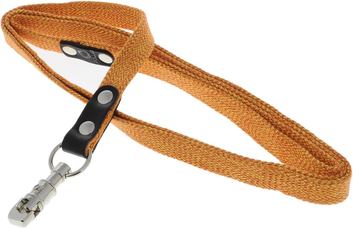 Поводок для собак CoLLaR, цвет: оранжевый, ширина 2 см, длина 2 м03404Поводок для собак CoLLaR изготовлен из хлопка и снабжен металлическим карабином. Поводок отличается не только исключительной надежностью и удобством, но и ярким дизайном. Он идеально подойдет для активных собак, для прогулок на природе и охоты. Поводок - необходимый аксессуар для собаки. Ведь в опасных ситуациях именно он способен спасти жизнь вашему любимому питомцу. Длина поводка: 2 м. Ширина поводка: 2 см.