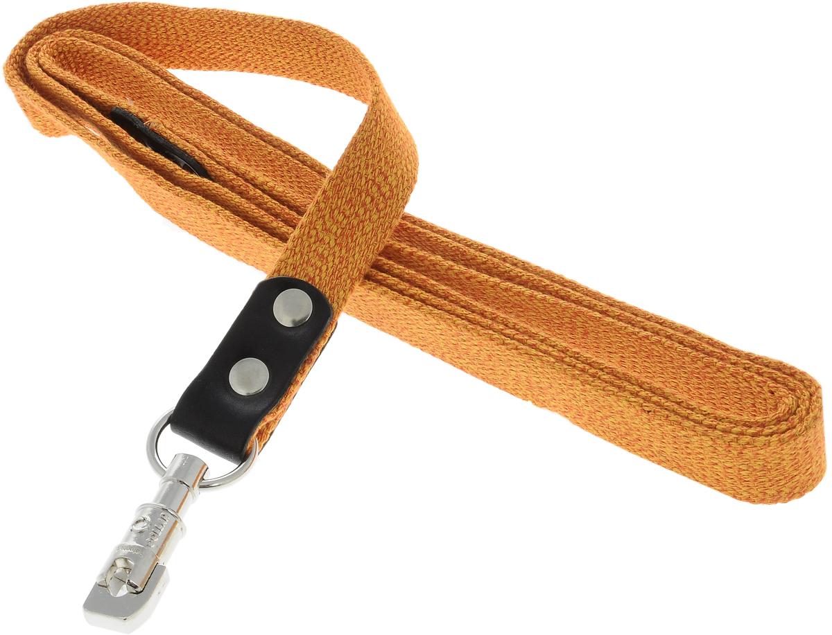 Поводок для собак CoLLaR, цвет: оранжевый, ширина 2,5 см, длина 2 м03424Поводок для собак CoLLaR изготовлен из хлопка и снабжен металлическим карабином. Поводок отличается не только исключительной надежностью и удобством, но и ярким дизайном. Он идеально подойдет для активных собак, для прогулок на природе и охоты. Поводок - необходимый аксессуар для собаки. Ведь в опасных ситуациях именно он способен спасти жизнь вашему любимому питомцу. Длина поводка: 2 м. Ширина поводка: 2,5 см.