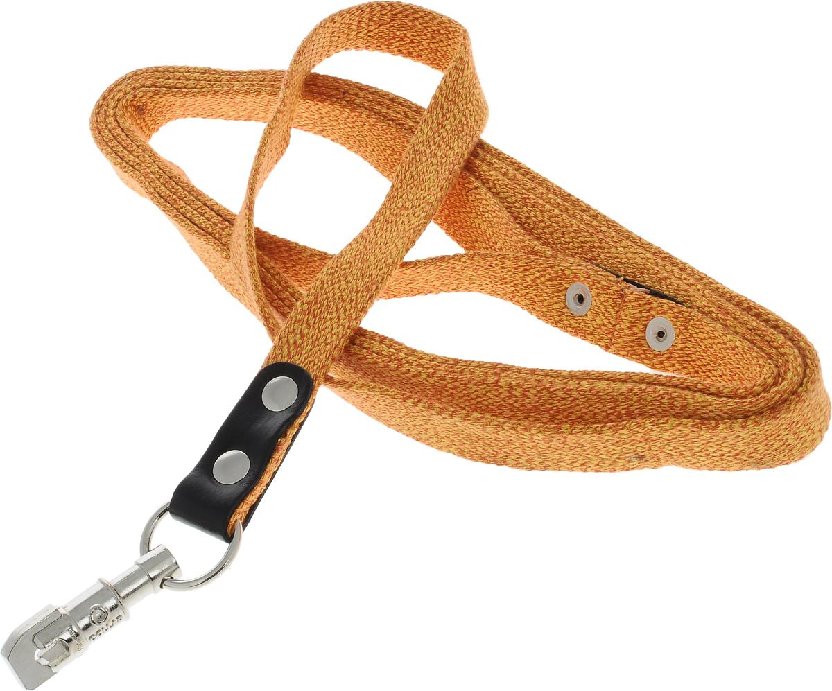 Поводок для собак CoLLaR, цвет: оранжевый, ширина 2 см, длина 3 м03414Поводок для собак CoLLaR изготовлен из хлопка и снабжен металлическим карабином. Поводок отличается не только исключительной надежностью и удобством, но и ярким дизайном. Он идеально подойдет для активных собак, для прогулок на природе и охоты. Поводок - необходимый аксессуар для собаки. Ведь в опасных ситуациях именно он способен спасти жизнь вашему любимому питомцу. Длина поводка: 3 м. Ширина поводка: 2 см.