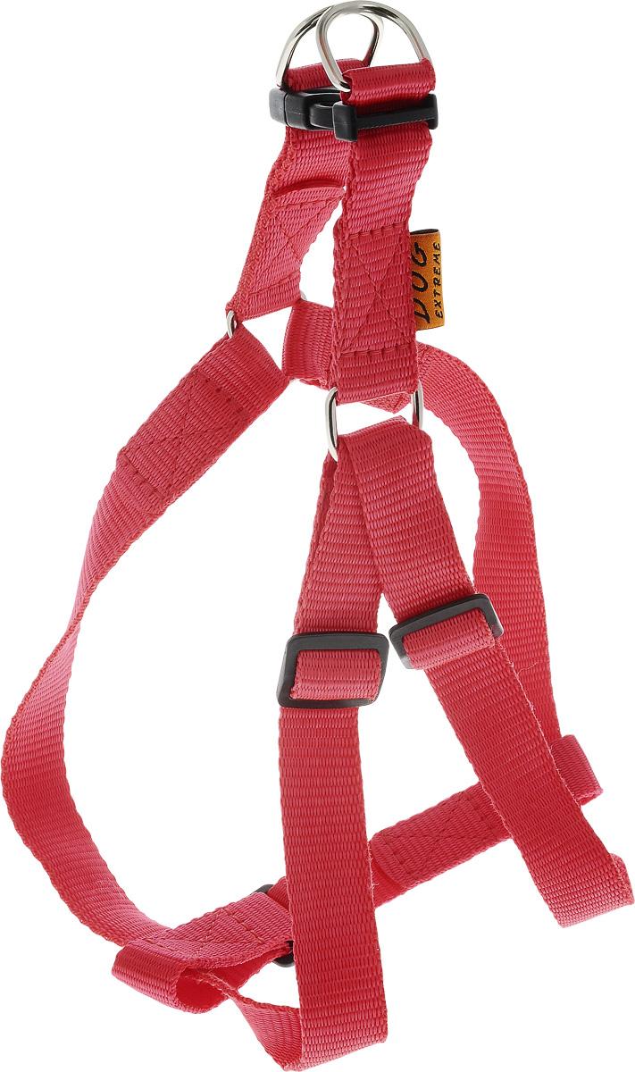 Шлейка для собак DOGExtremе, цвет: красный, ширина 20 мм, обхват груди 50-80 см06673Шлейка DOGExtreme, изготовленная из прочного нейлона, подходит для собак. Крепкие металлические элементы делают ее надежной и долговечной. Шлейка - это альтернатива ошейнику. Правильно подобранная шлейка не стесняет движения питомца, не натирает кожу, поэтому животное чувствует себя в ней уверенно и комфортно. Размер регулируется при помощи пряжки. Изделие отличается высоким качеством, удобством и универсальностью. В комплекте нейлоновый поводок с металлическим карабином. Обхват груди: 50-80 см. Ширина шлейки: 2 см.