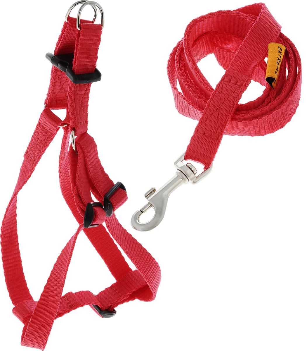 Шлейка для собак DOGExtremе, с поводком, цвет: красный, ширина 15 мм, обхват груди 40-55 см07033Шлейка DOGExtreme, изготовленная из прочного нейлона, подходит для собак. Крепкие металлические элементы делают ее надежной и долговечной. Шлейка - это альтернатива ошейнику. Правильно подобранная шлейка не стесняет движения питомца, не натирает кожу, поэтому животное чувствует себя в ней уверенно и комфортно. Размер регулируется при помощи пряжки. Изделие отличается высоким качеством, удобством и универсальностью. В комплекте нейлоновый поводок с металлическим карабином. Обхват груди: 40-55 см. Ширина шлейки: 1,5 см. Длина поводка: 117 см.