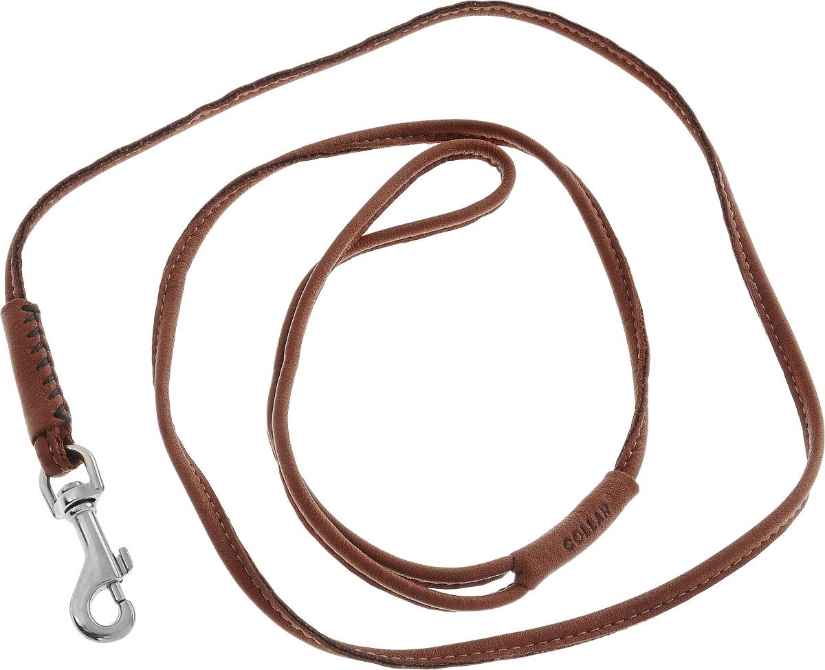 Поводок для собак CoLLaR SOFT, цвет: коричневый, диаметр 4 мм, длина 1,22 м73466Поводок для собак CoLLaR SOFT изготовлен из натуральной кожи и снабжен металлическим карабином. Поводок отличается не только исключительной надежностью и удобством, но и оригинальным дизайном. Он идеально подойдет для активных собак, для прогулок на природе и охоты. Поводок - необходимый аксессуар для собаки. Ведь в опасных ситуациях именно он способен спасти жизнь вашему любимому питомцу. Диаметр поводка: 4 мм. Длина поводка: 1,22 м.