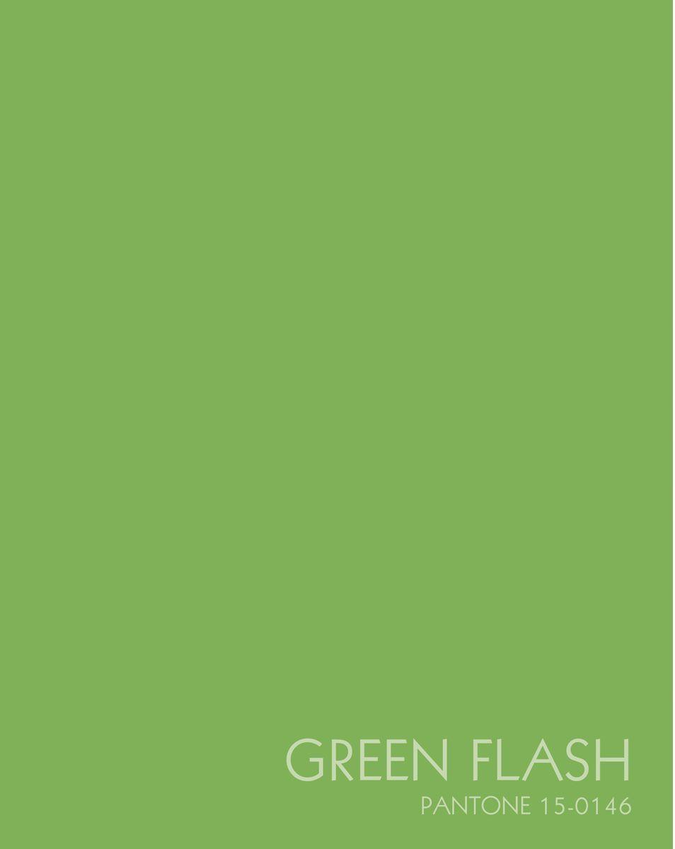 Канц-Эксмо Записная книжка Цвета года Зеленая вспышка 96 листов в клеткуЕТИЛ59645Записная книжка в плотной гибкой обложке А5 , 96 листов. Обложка с матовой ламинацией и выборочным лакированием, пантонная печать. Форзацы белые, бумага 60гр/м2, белая, клетка.