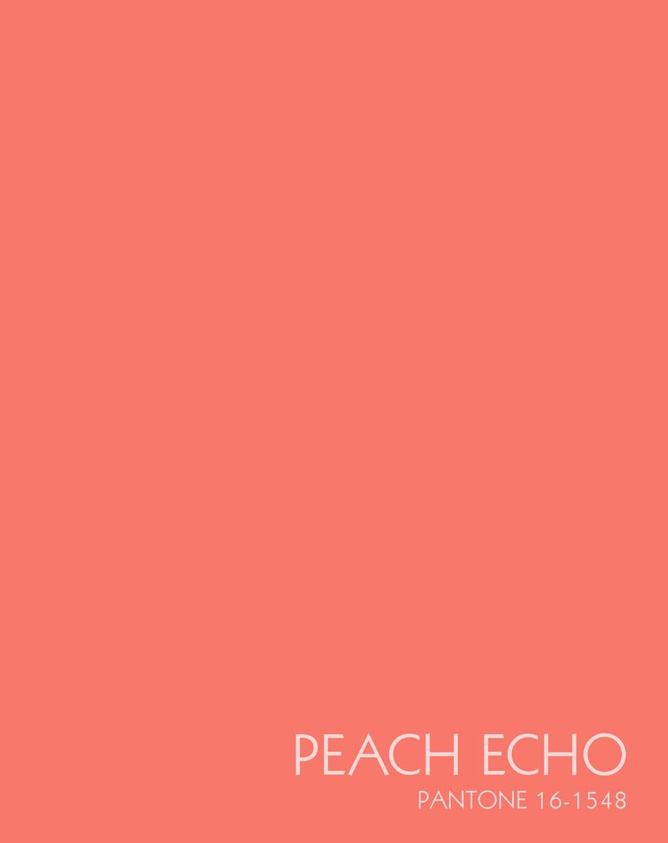 Канц-Эксмо Записная книжка Цвета года Персиковое настроение 96 листов в клеткуЕТИЛ59648Записная книжка в плотной гибкой обложке А5 , 96 листов. Обложка с матовой ламинацией и выборочным лакированием, пантонная печать. Форзацы белые, бумага 60гр/м2, белая, клетка.