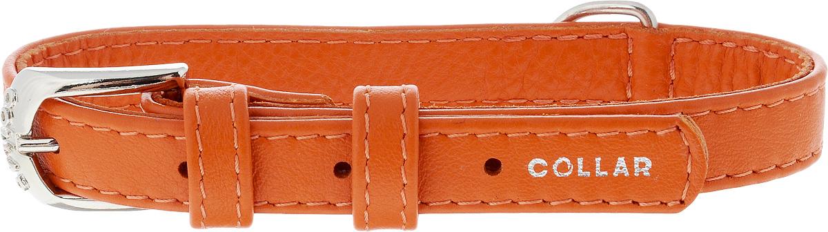 Ошейник для собак CoLLaR Glamour, цвет: оранжевый, ширина 1,5 см, обхват шеи 27-36 см32704Ошейник CoLLaR Glamour изготовлен из кожи, устойчивой к влажности и перепадам температур. Клеевой слой, сверхпрочные нити, крепкие металлические элементы делают ошейник надежным и долговечным. Изделие отличается высоким качеством, удобством и универсальностью. Размер ошейника регулируется при помощи металлической пряжки. Имеется металлическое кольцо для крепления поводка. Ваша собака тоже хочет выглядеть стильно! Такой модный ошейник станет для питомца отличным украшением и выделит его среди остальных животных. Минимальный обхват шеи: 27 см. Максимальный обхват шеи: 36 см. Ширина: 1,5 см.