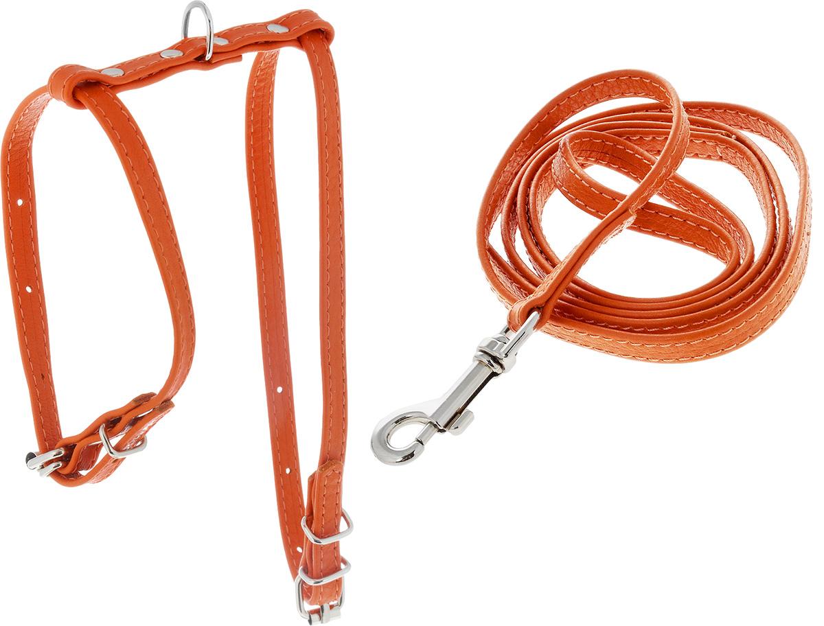 Шлейка для животных CoLLaR Glamour, с поводком, цвет: оранжевый, ширина 9 мм, обхват груди: 30-40 см33994_оранжевыйШлейка CoLLaR Glamour, изготовленная из натуральной кожи, подходит для домашних животных мелких пород, например, для кошек, собак, кроликов. Крепкие металлические элементы делают ее надежной и долговечной. Шлейка - это альтернатива ошейнику. Правильно подобранная шлейка не стесняет движения питомца, не натирает кожу, поэтому животное чувствует себя в ней уверенно и комфортно. Размер регулируется при помощи пряжки. Изделие отличается высоким качеством, удобством и универсальностью. В комплекте кожаный поводок с металлическим карабином. Обхват шеи: 20-30 см. Обхват груди: 30-40 см. Ширина шлейки и поводка: 9 мм. Длина поводка: 115 см.