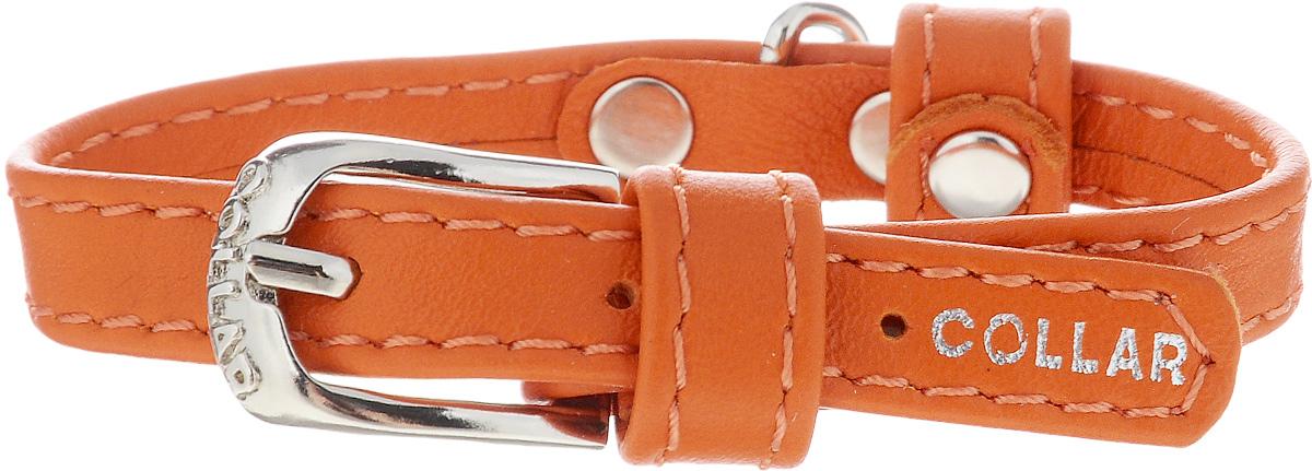 Ошейник для собак CoLLaR Glamour, цвет: оранжевый, ширина 9 мм, обхват шеи 18-21 см. 320032004Ошейник CoLLaR Glamour изготовлен из кожи, устойчивой к влажности и перепадам температур. Клеевой слой, сверхпрочные нити, крепкие металлические элементы делают ошейник надежным и долговечным. Изделие отличается высоким качеством, удобством и универсальностью. Размер ошейника регулируется при помощи металлической пряжки. Имеется металлическое кольцо для крепления поводка. Ваша собака тоже хочет выглядеть стильно! Такой модный ошейник станет для питомца отличным украшением и выделит его среди остальных животных. Минимальный обхват шеи: 18 см. Максимальный обхват шеи: 21 см. Ширина: 9 мм.