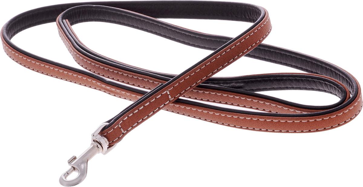 Поводок для собак CoLLaR SOFT, цвет: черный, коричневый, ширина 1,3 см, длина 1,22 м7255Поводок для собак CoLLaR SOFT с коричневым верхом изготовлен из натуральной кожи и снабжен металлическим карабином. Поводок отличается не только исключительной надежностью и удобством, но и оригинальным дизайном. Он идеально подойдет для активных собак, для прогулок на природе и охоты. Поводок - необходимый аксессуар для собаки. Ведь в опасных ситуациях именно он способен спасти жизнь вашему любимому питомцу. Ширина поводка: 1,3 см. Длина поводка: 1,22 м.
