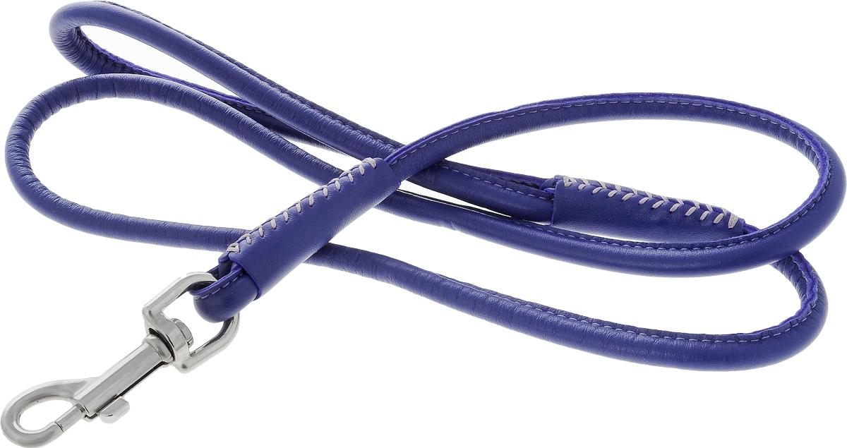 Поводок для собак CoLLaR Glamour, цвет: фиолетовый, диаметр 1 см, длина 1,22 м33789Поводок для собак CoLLaR Glamour изготовлен из натуральной кожи и снабжен металлическим карабином. Поводок отличается не только исключительной надежностью и удобством, но и ярким дизайном. Он идеально подойдет для активных собак, для прогулок на природе и охоты. Поводок - необходимый аксессуар для собаки. Ведь в опасных ситуациях именно он способен спасти жизнь вашему любимому питомцу. Длина поводка: 1,22 м. Диаметр поводка: 1 см.