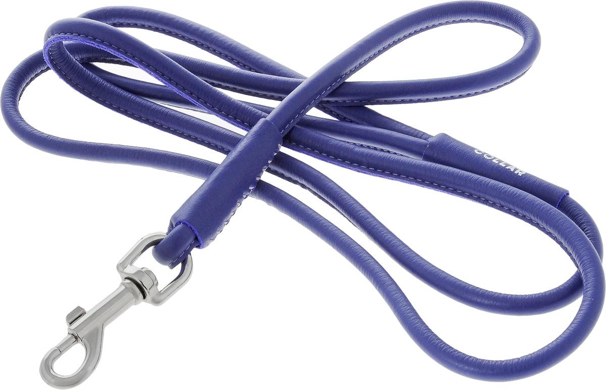 Поводок для собак CoLLaR Glamour, цвет: фиолетовый, диаметр 1 см, длина 1,83 м34409Поводок для собак CoLLaR Glamour изготовлен из натуральной кожи и снабжен металлическим карабином. Поводок отличается не только исключительной надежностью и удобством, но и ярким дизайном. Он идеально подойдет для активных собак, для прогулок на природе и охоты. Поводок - необходимый аксессуар для собаки. Ведь в опасных ситуациях именно он способен спасти жизнь вашему любимому питомцу. Длина поводка: 1,83 м. Диаметр поводка: 1 см.