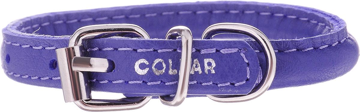 Ошейник для собак CoLLaR Glamour, цвет: фиолетовый, диаметр 6 мм, обхват шеи 17-20 см22269Ошейник для собак CoLLaR Glamour, выполненный из натуральной кожи, устойчив к влажности и перепадам температур. Крепкие металлические элементы делают ошейник надежным и долговечным. Изделие отличается высоким качеством, удобством и универсальностью. Размер ошейника регулируется при помощи пряжки, зафиксированной на одном из 3 отверстий. Минимальный обхват шеи: 17 см. Максимальный обхват шеи: 20 см. Диаметр ошейника: 6 мм.
