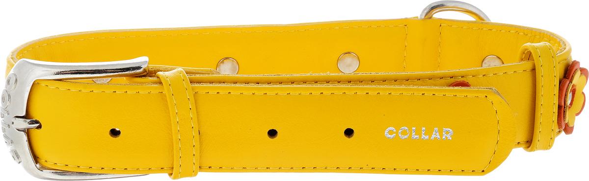 Ошейник для собак CoLLaR Glamour Аппликация, цвет: желтый, оранжевый, ширина 3,5 см, обхват шеи 46-60 см35048Ошейник CoLLaR Glamour Аппликация изготовлен из кожи, устойчивой к влажности и перепадам температур. Клеевой слой, сверхпрочные нити, крепкие металлические элементы делают ошейник надежным и долговечным. Изделие отличается высоким качеством, удобством и универсальностью. Размер ошейника регулируется при помощи металлической пряжки. Имеется металлическое кольцо для крепления поводка. Ваша собака тоже хочет выглядеть стильно! Модный ошейник с аппликацией в виде цветов станет для питомца отличным украшением и выделит его среди остальных животных. Минимальный обхват шеи: 46 см. Максимальный обхват шеи: 60 см. Ширина: 3,5 см.