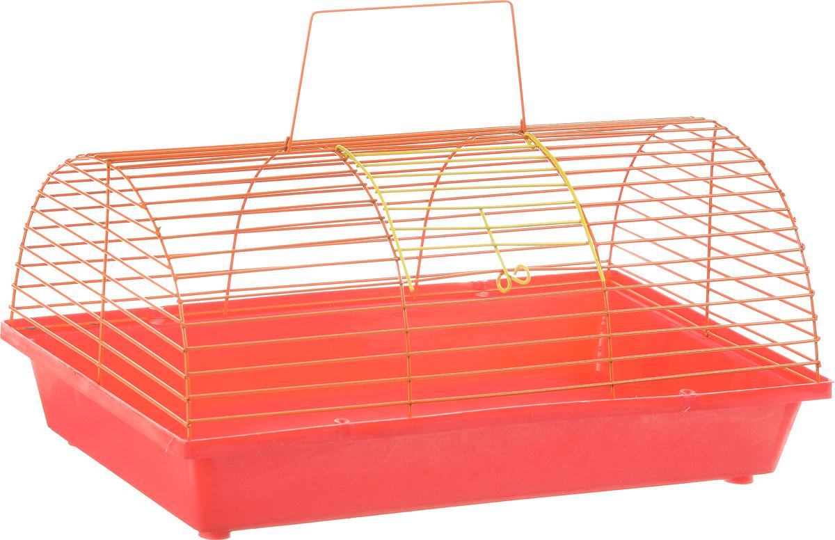 Клетка для грызунов ЗооМарк, цвет: красный поддон, оранжевая решетка, 36 х 23 х 17,5 см80_красный, оранжевыйКлетка ЗооМарк, выполненная из полипропилена и металла, подходит для мелких грызунов. Она имеет яркий поддон, удобна в использовании и легко чистится. Сверху имеется ручка для переноски. Такая клетка станет уединенным личным пространством и уютным домиком для маленького грызуна.