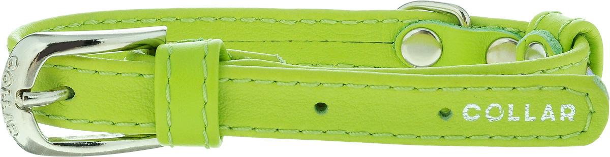 Ошейник для собак CoLLaR Glamour, цвет: зеленый, ширина 1,2 см, обхват шеи 21-29 см32685Ошейник CoLLaR Glamour изготовлен из кожи, устойчивой к влажности и перепадам температур. Клеевой слой, сверхпрочные нити, крепкие металлические элементы делают ошейник надежным и долговечным. Изделие отличается высоким качеством, удобством и универсальностью. Размер ошейника регулируется при помощи металлической пряжки. Имеется металлическое кольцо для крепления поводка. Ваша собака тоже хочет выглядеть стильно! Модный ошейник, декорированный стразами, станет для питомца отличным украшением и выделит его среди остальных животных. Минимальный обхват шеи: 21 см. Максимальный обхват шеи: 29 см. Ширина: 1,2 см.